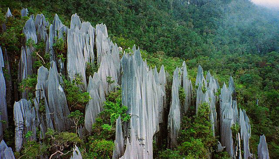 640px-Pinnacles_at_Mulu_2